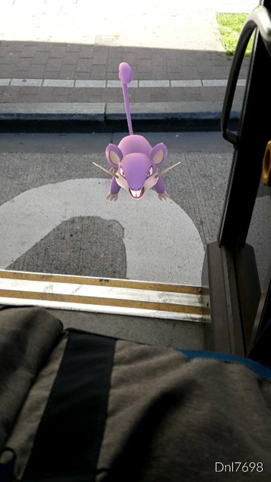 Rattata heeft zich van deur vergist. Hij gaat vooraan instappen en zijn MOBIB-kaart valideren. (foto Daniel Lopes)